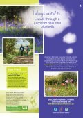 Visitor Guide - The National Forest - Page 5