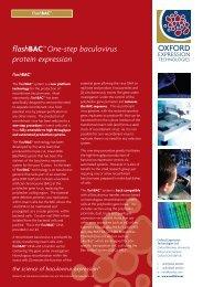 flashBAC™ One-step baculovirus protein expression