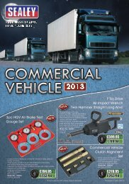 Download our Commercial Vehicle Tools Promotion Here