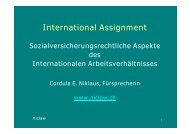 International Assignment - niclaw