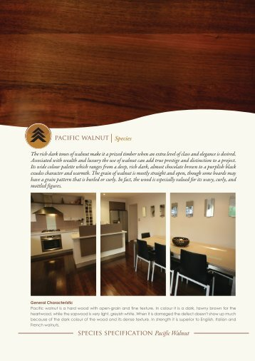 download pacific walnut - Harmony Timber Floors