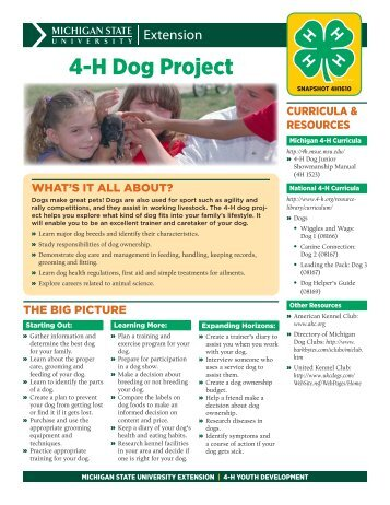 4-H Projects