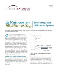 Soil Storage and Infiltration System