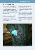 Højtryksrensning i landbruget Sådan undgår du ... - Safety on the farm - Page 3