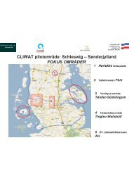 CLIWAT pilotområde: Schleswig – Sønderjylland FOKUS ... - Cliwat.eu