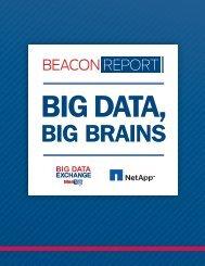 rp-meritalk-big-data-big-brains