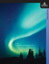 REMstar CPAP brochure