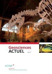Geoscience ACTUEL 4/2010 - Platform Geosciences - SCNAT