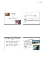 (Microsoft PowerPoint - Idr\346tsl\346rernes forum ...
