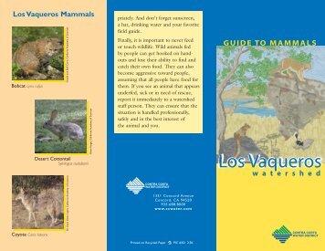 Guide to Los Vaqueros: Mammals