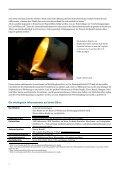 informationsveranstaltung - Deutsch-Indonesische Industrie- und ... - Seite 6