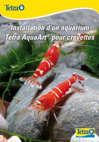 Installation d'un aquarium Tetra AquaArt® pour crevettes - Aquaportail