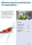 Installation d'un aquarium Tetra AquaArt® pour crevettes - Aquaportail - Page 3