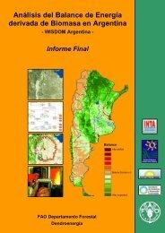 Análisis del Balance de Energía derivada de Biomasa en Argentina