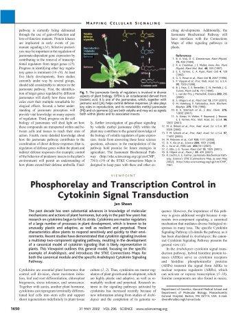 Phosphorelay and Transcription Control in Cytokinin Signal ...