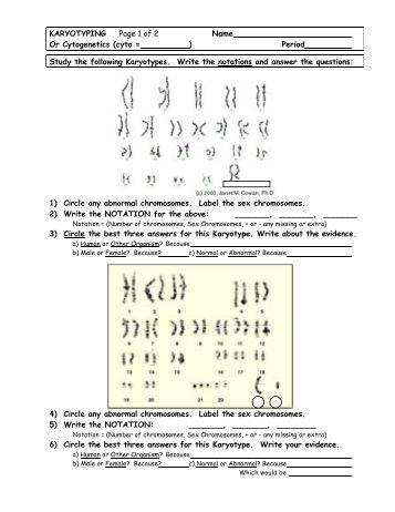 28 karyotyping worksheet karyotyping lab unit 7 contents sciactivitiespage karyotyping. Black Bedroom Furniture Sets. Home Design Ideas