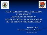 Kiss Zsolt László