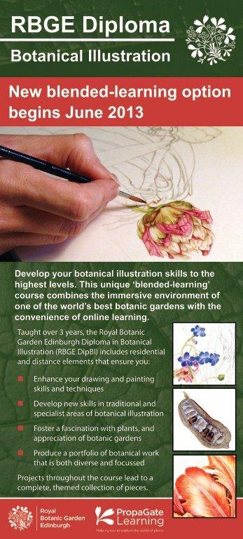RBGE Diploma Botanical Illustration New blended-learning option ...
