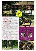 pferde+hundeprodukte_RZ beli_neu 3_08:pferde+ ... - Seite 2