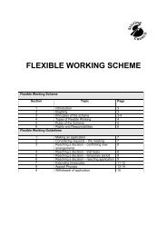 Flexible Working Scheme - Stirling Council