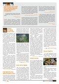 Svět neziskovek 10/2010 - Neziskovky - Page 7