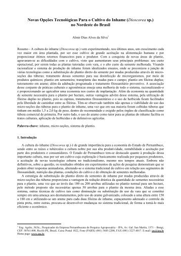 Novas opções tecnológicas para o cultivo do inhame (Dioscorea sp.)