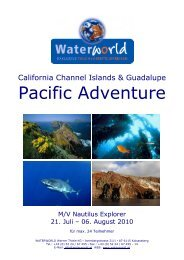 California Channel Islands & Guadalupe