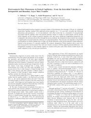Electroosmotic Flow Phenomena in Packed Capillaries - American ...