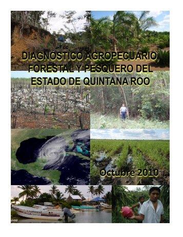 DIRECTORIO - Sagarpa