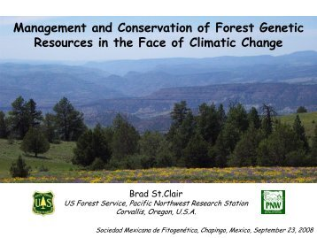 Management and Conservation of Forest Genetic Resources in the ...