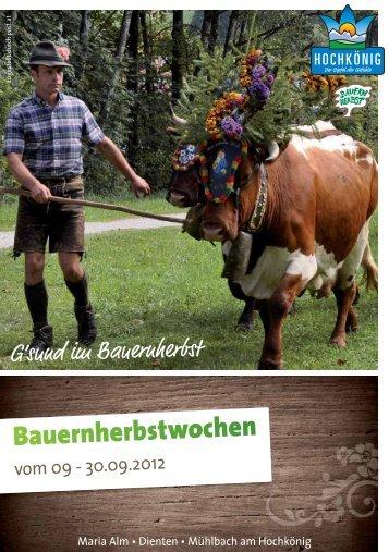 Hauptfest des Bauernherbstes in Maria Alm - Hochkoenig