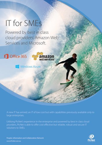 IT for SMEs - PicNet