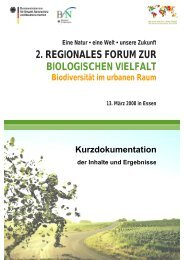 Kurzdokumentation (PDF-Datei, 1.738 KByte) - Biodiversität ...