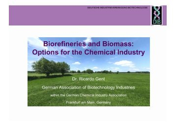 Options for the Chemical Industry - Biorefinery