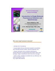 Introduction to Single Molecule Fluorescence Detection and ...