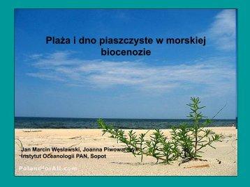 Jurata2010Sandy beaches - ZMiGM