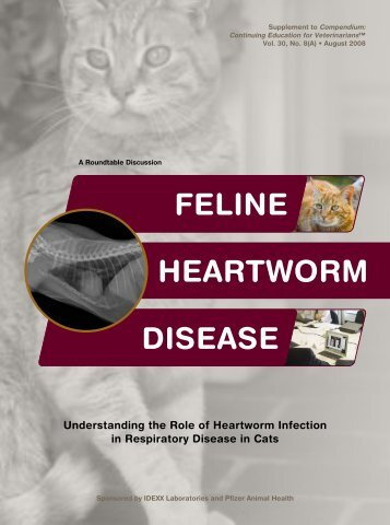 Feline Heartworm Disease Roundtable - IDEXX - IDEXX Laboratories
