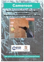 Cameroon: Securing Indigenous Peoples' Rights in Conservation ...