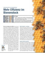 Mehr Effizienz im Bienenstock
