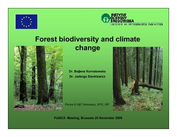 climate change and tropical biodiversity The effects of global warming are the environmental and social changes caused (directly or indirectly) by human emissions of greenhouse gasesthere is a scientific consensus that climate change is occurring, and.