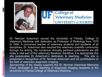 Dr. Ackerman's Display Clinical Case – Abdomen - University of ...