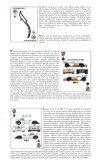 La Suerte Está Echada - Spor Car - Page 2