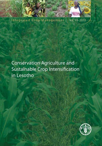 Conservation Agriculture and Sustainable Crop Intensification in ...