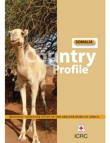 Somalia Country Profile - Disaster risk reduction