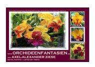 lex-art-webkat/Orchideenfantasien