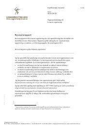 Revisorsrapport - Ungdomsstyrelsen