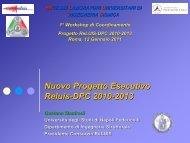 Nuovo Progetto Esecutivo Reluis-DPC 2010-2013