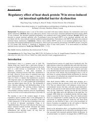 Regulatory effect of heat shock protein 70 in the stress-induced rat ...