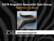 IUCN Anguillid Specialist Sub-Group.pdf