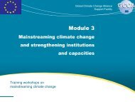 What is mainstreaming? - Global Climate Change Alliance
